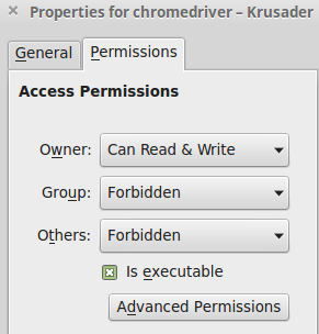 chromderiver file properties and permissions